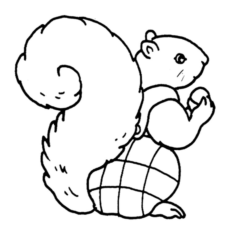 animal tails coloring pages printable animal lizard with long tail coloring pagefree tails animal coloring pages