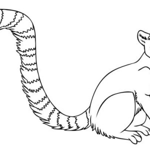 animal tails coloring pages tail coloring pages to download and print for free pages tails animal coloring