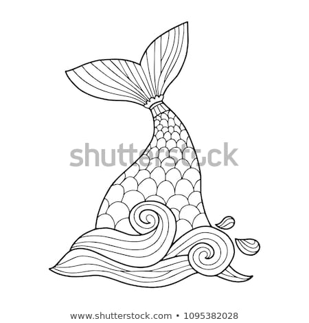 animal tails coloring pages vector mermaid tail illustration perfect coloring stock animal coloring pages tails