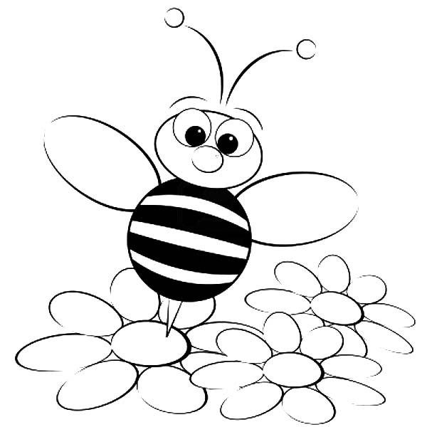 bee for coloring honey bee drawing cartoon at getdrawingscom free for bee for coloring