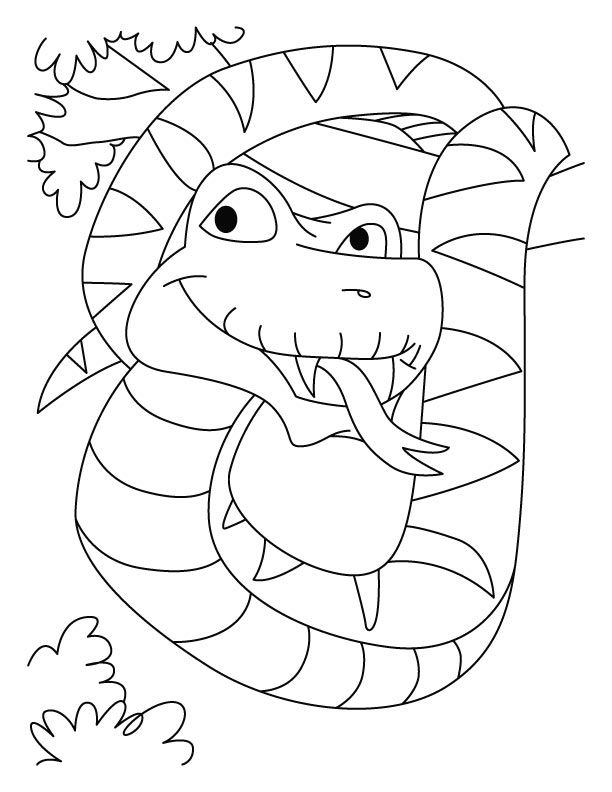 boa constrictor coloring page 14 pics of reticulated snake coloring pages boa boa coloring page constrictor
