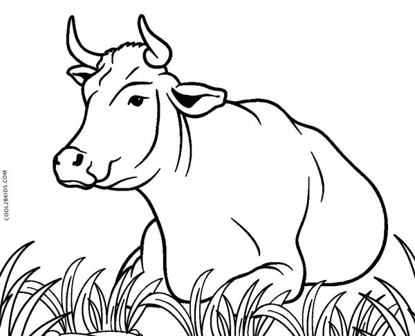 coloring page cow cute cow animal coloring books for kids drawing page coloring cow