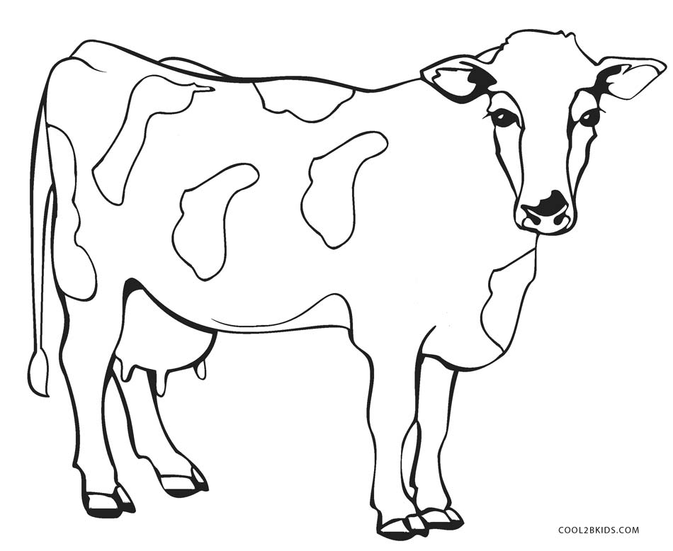 coloring page cow free printable cow coloring pages for kids cool2bkids coloring cow page