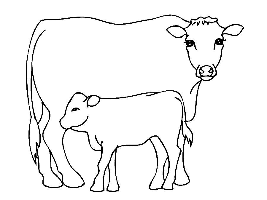 coloring page cow free printable cow coloring pages for kids cool2bkids coloring page cow