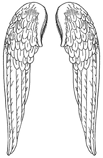 coloring pages wings angel wings line drawing at getdrawingscom free for coloring pages wings