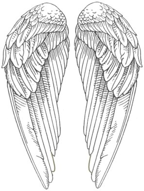 coloring pages wings pencil angel wings coloring pages pages coloring wings