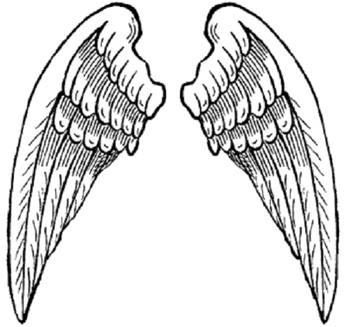 coloring pages wings printable angel wings clipart best wings pages coloring