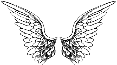 coloring pages wings wings coloring pages google search hobbies pinterest pages coloring wings