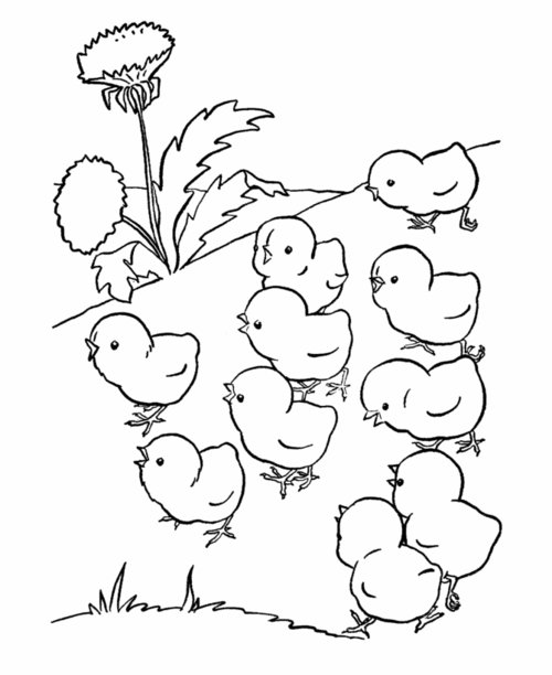 colouring baby animals baby animals coloring pages to kids baby animals colouring