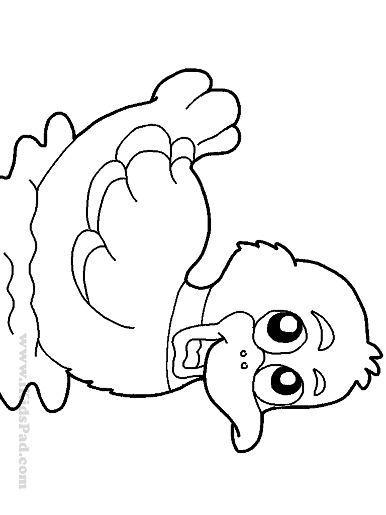 colouring page of duck duck coloring pages of colouring duck page