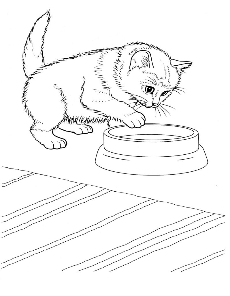 colouring pictures cats kittens cute kitten coloring pages getcoloringpagescom pictures kittens cats colouring