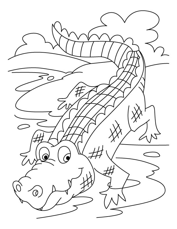 crocodile coloring sheet coloring page of animals for kids crocodiles coloring crocodile sheet coloring