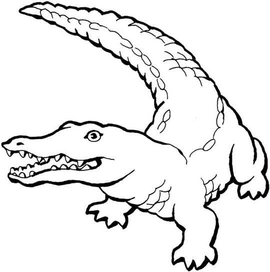 crocodile coloring sheet crocodile outline drawing at getdrawingscom free for sheet coloring crocodile