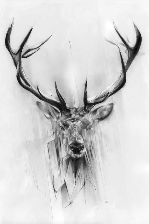 deer sketch mule deer heaven drawing by russ smith deer sketch