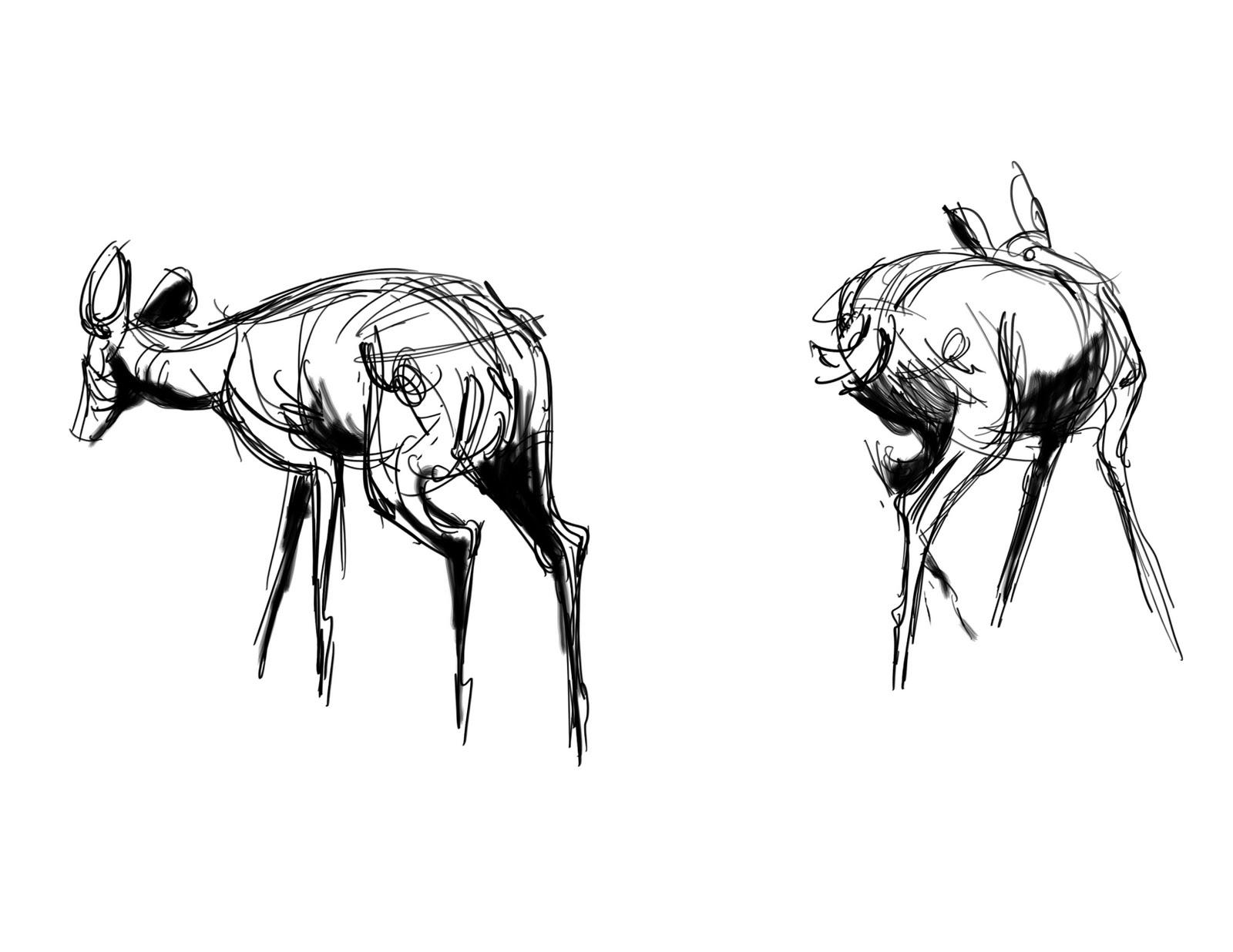 deer sketch red deer canvas wall art by alexis marcou icanvas sketch deer