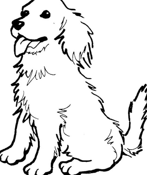dog pictures to color free dog coloring pages for kids homepage animal kids color free dog to pictures