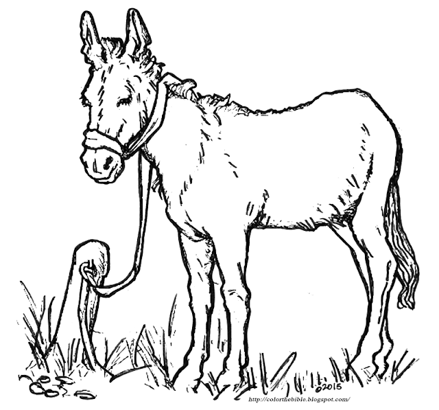donkey coloring pages donkey coloring page getcoloringpagescom donkey coloring pages