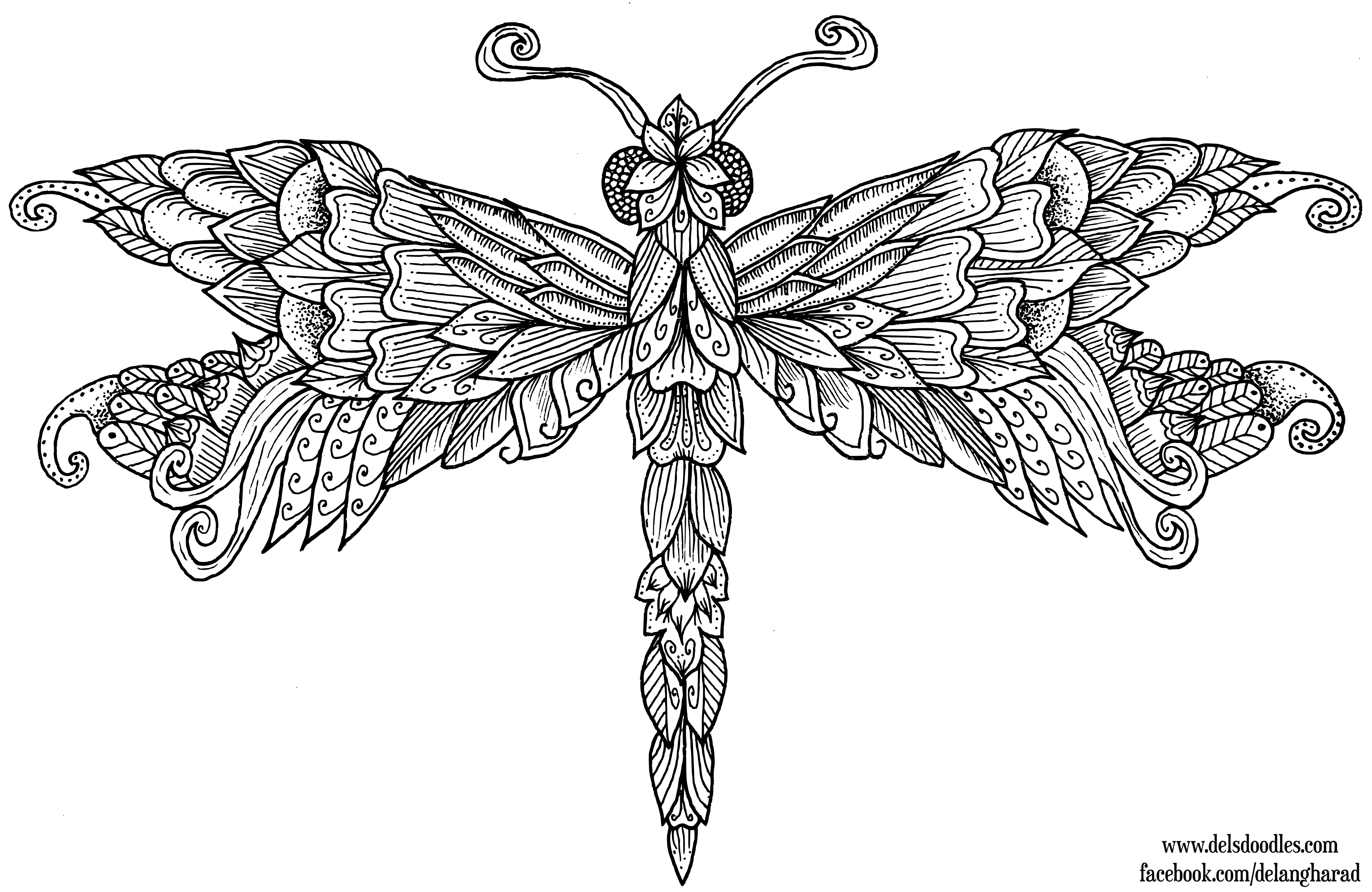 dragonfly colouring page dragonflies adult coloring page digital stamp dragonfly page colouring