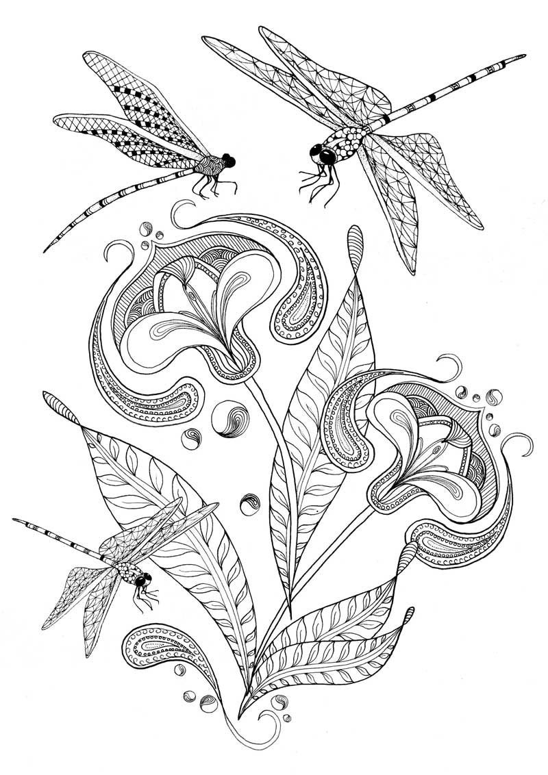 dragonfly colouring page free printable dragonfly coloring pages for kids colouring dragonfly page
