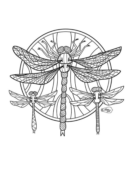 dragonfly colouring page free printable dragonfly coloring pages for kids colouring page dragonfly