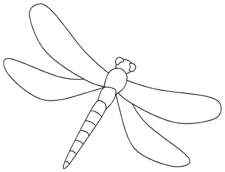 dragonfly colouring page free printable dragonfly coloring pages for kids dragonfly colouring page