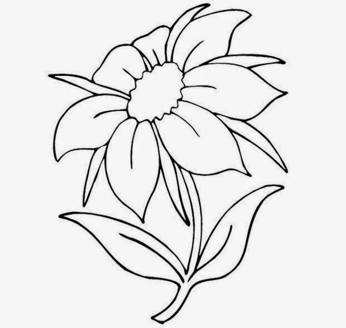easy plants to draw flower drawings with color for kids tumblr in black and easy draw plants to