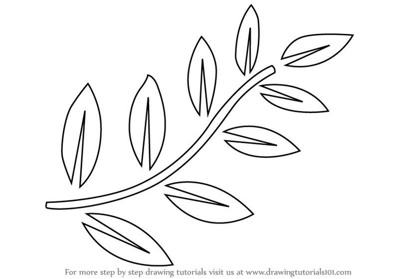 easy plants to draw learn how to draw fern leaves plants step by step easy to draw plants
