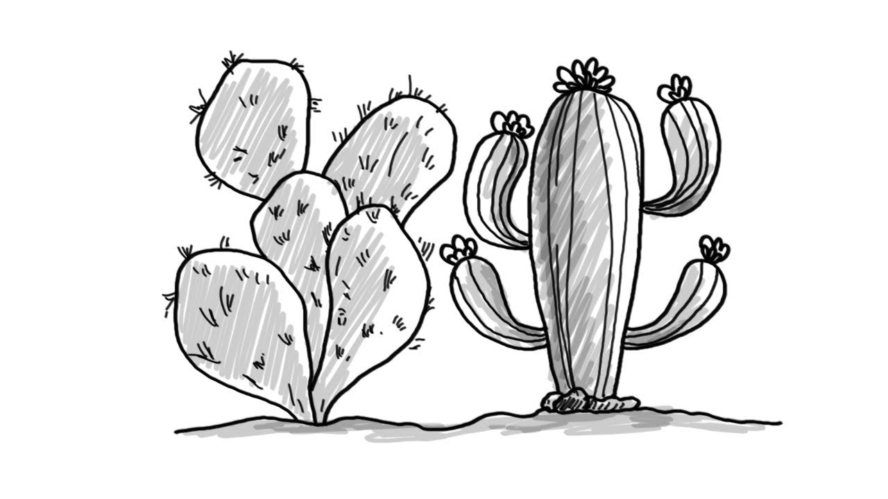 easy plants to draw pictures of flowers to draw beautiful flowers to easy draw plants