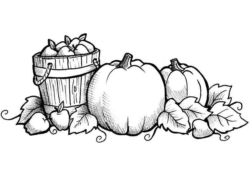 fall coloring pages for preschoolers free printable fall coloring pages for kids best coloring preschoolers pages fall for