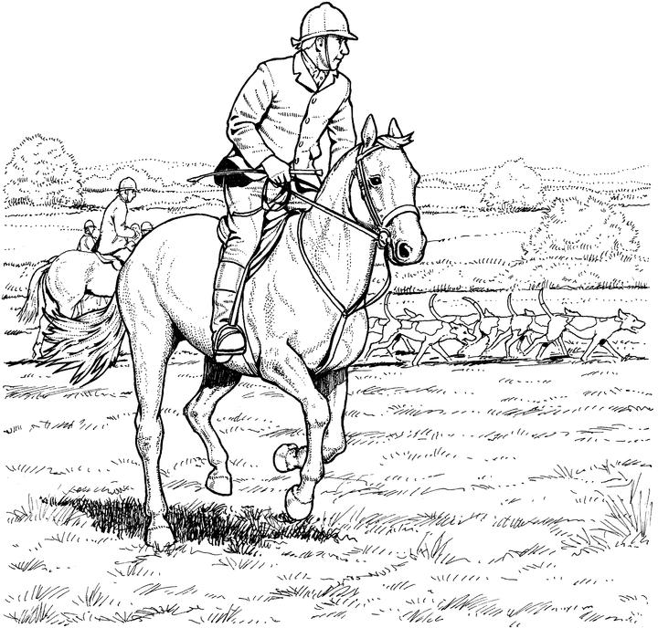 horse pages horse coloring pages for adults best coloring pages for kids pages horse