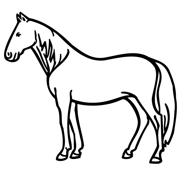 horse pages standing horse coloring page pages horse