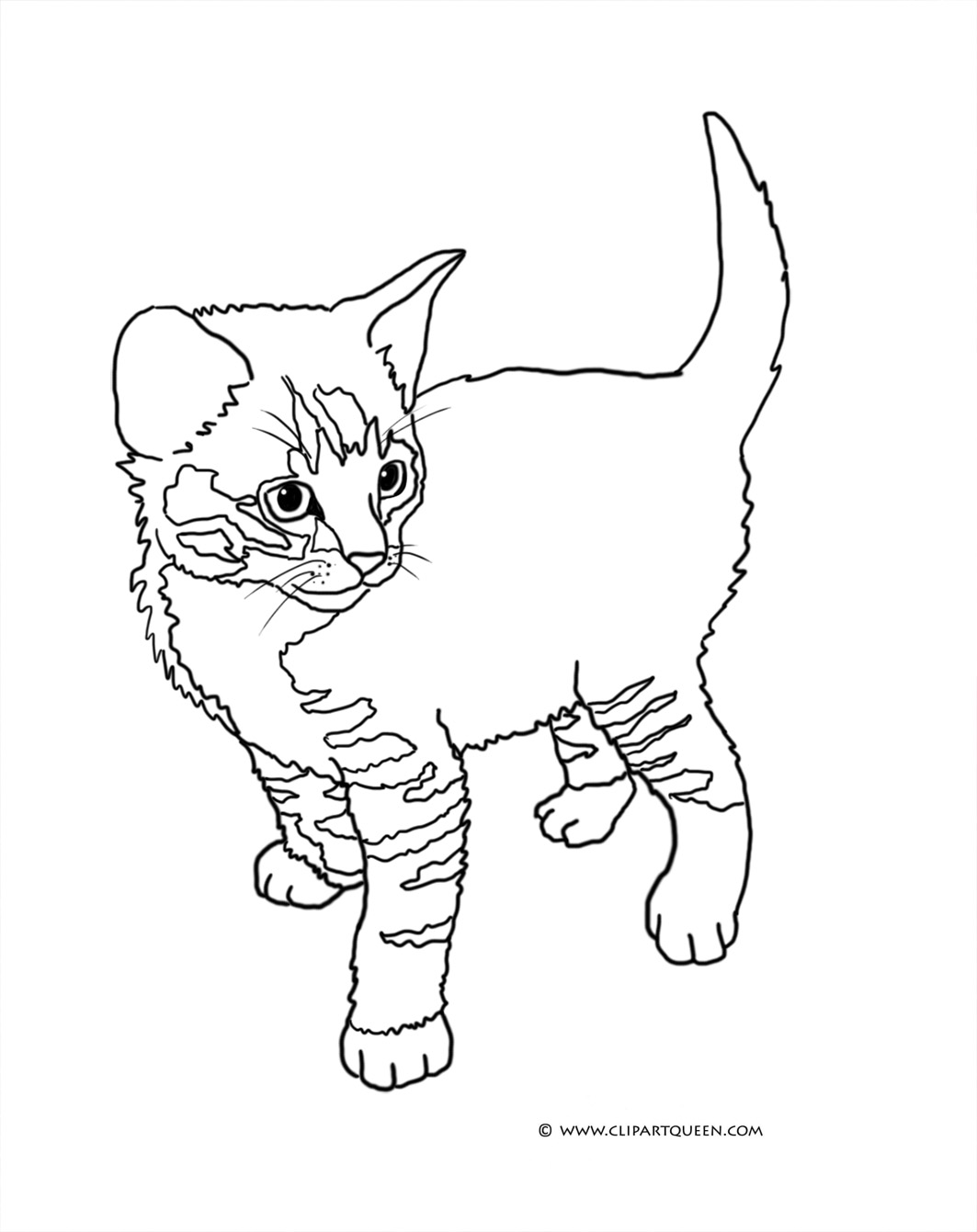 kitten coloring cat coloring pages kitten coloring