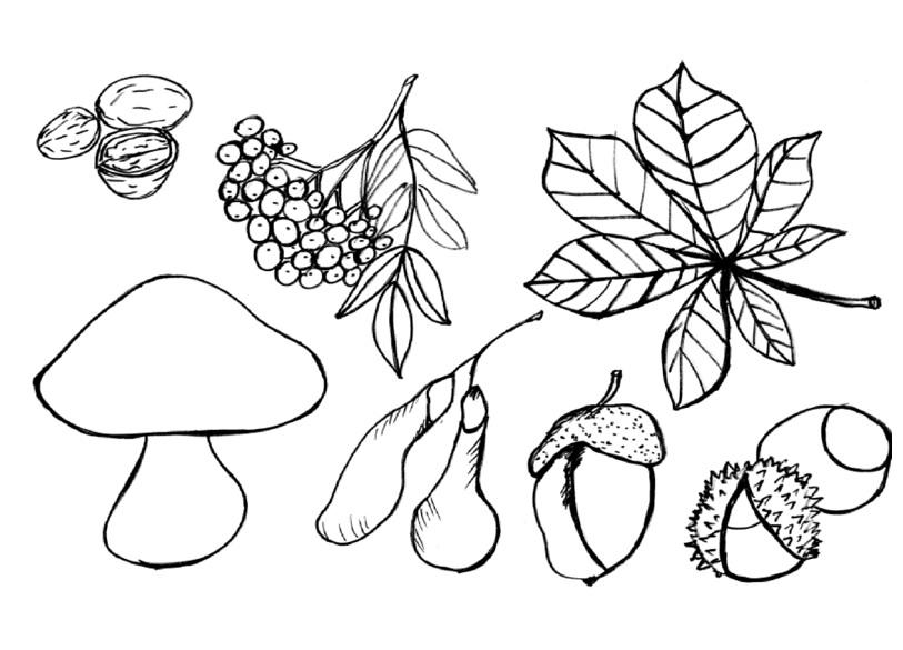 kolorowanki jesie jesienna kolorowanka kasztanowy ludzik modowopl kolorowanki jesie