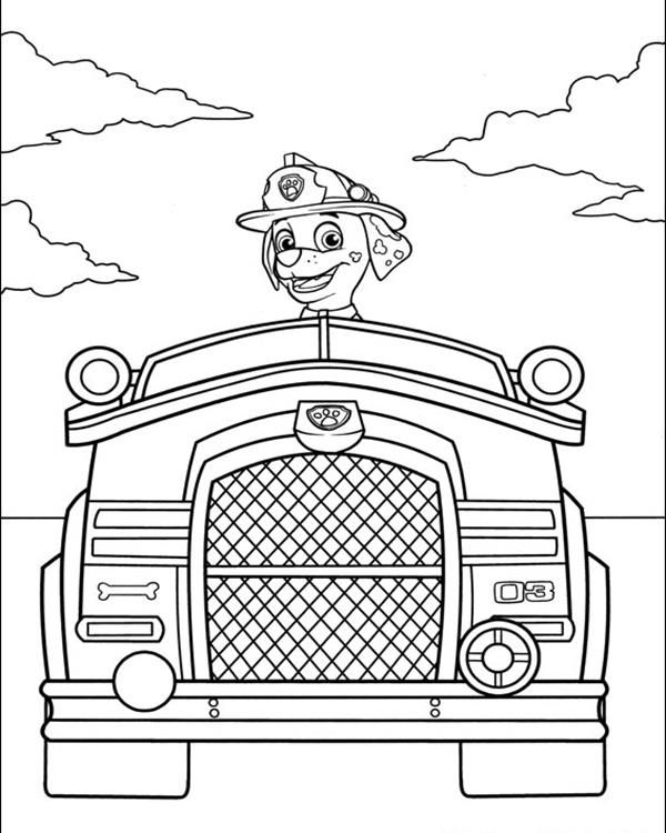 paw patrol truck coloring pages of cars and trucks unique paw patrol truck patrol paw