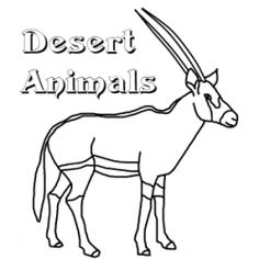 pictures of animals in desert free printable desert coloring pages sketch coloring page desert animals of pictures in
