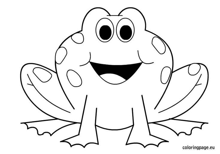 pictures of frogs to color free printable frog coloring pages for kids frogs color of to pictures