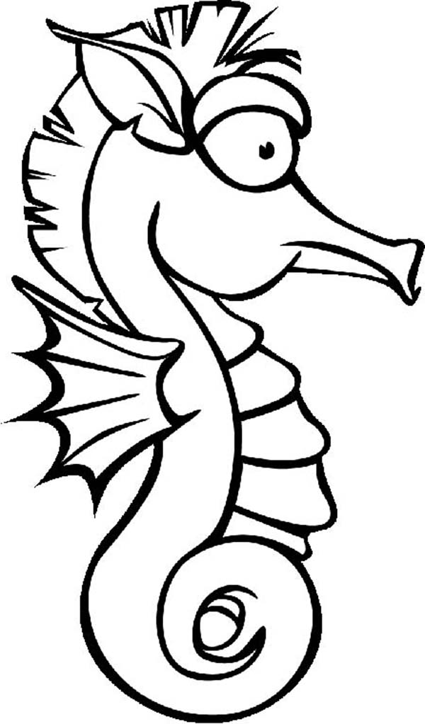 pictures of seahorses to colour realistic seahorse coloring page coloring pages animal seahorses to pictures colour of