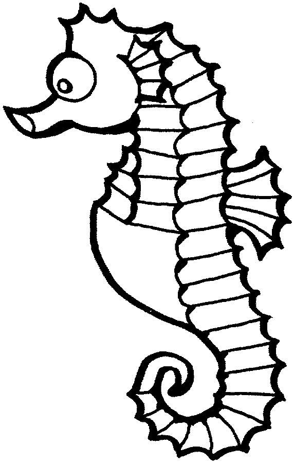 pictures of seahorses to colour sea horse clip art clipartsco seahorses colour pictures to of