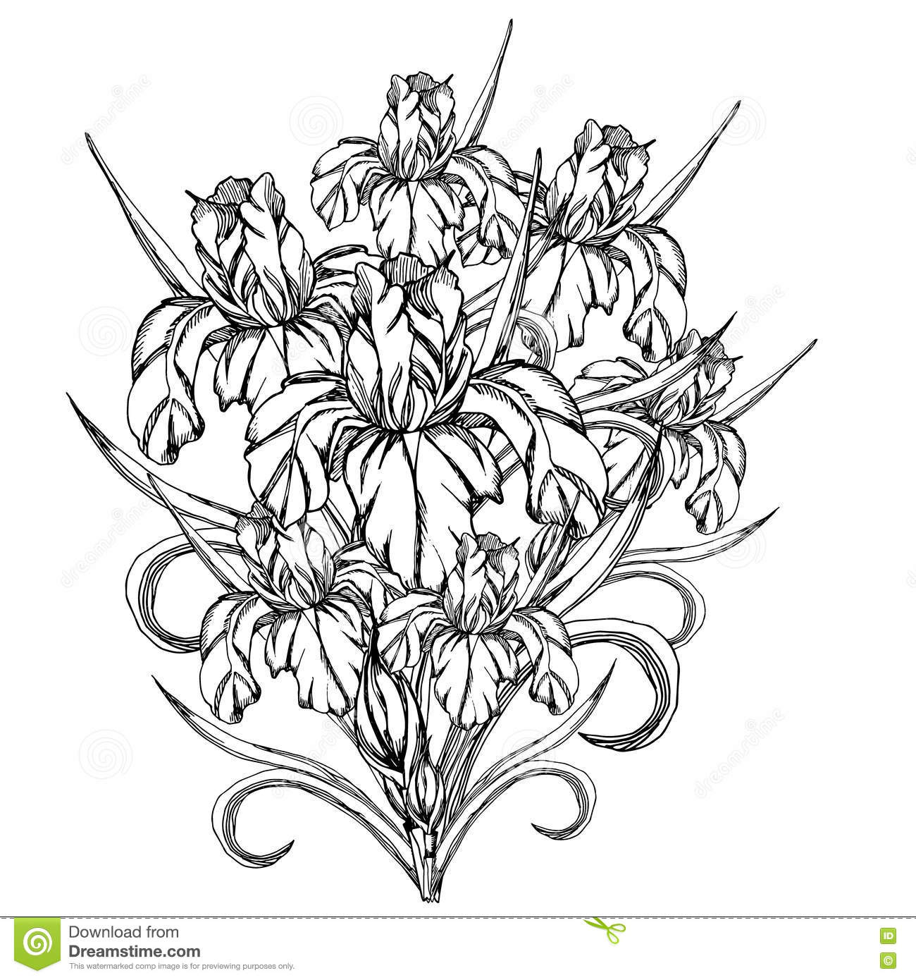 pictures to trace for adults hand drawn sun anti stress colouring stock vector for pictures trace to adults