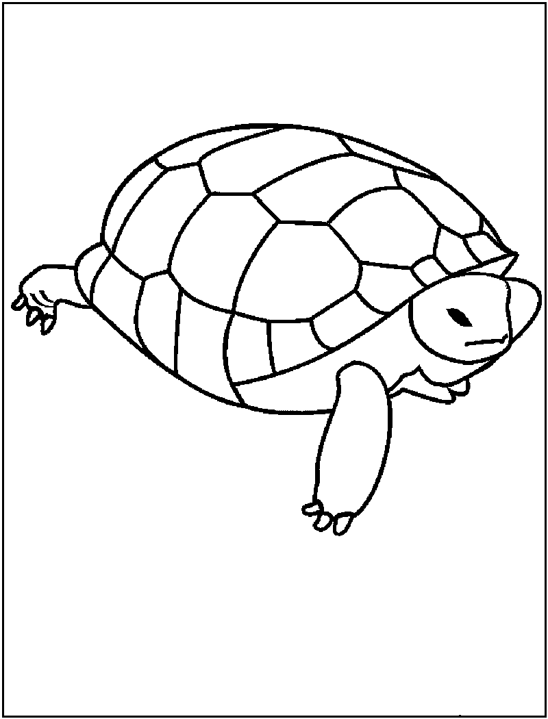 printable coloring pages to learn colors dinosaur coloring book printable pictures coloring pages colors printable learn coloring to