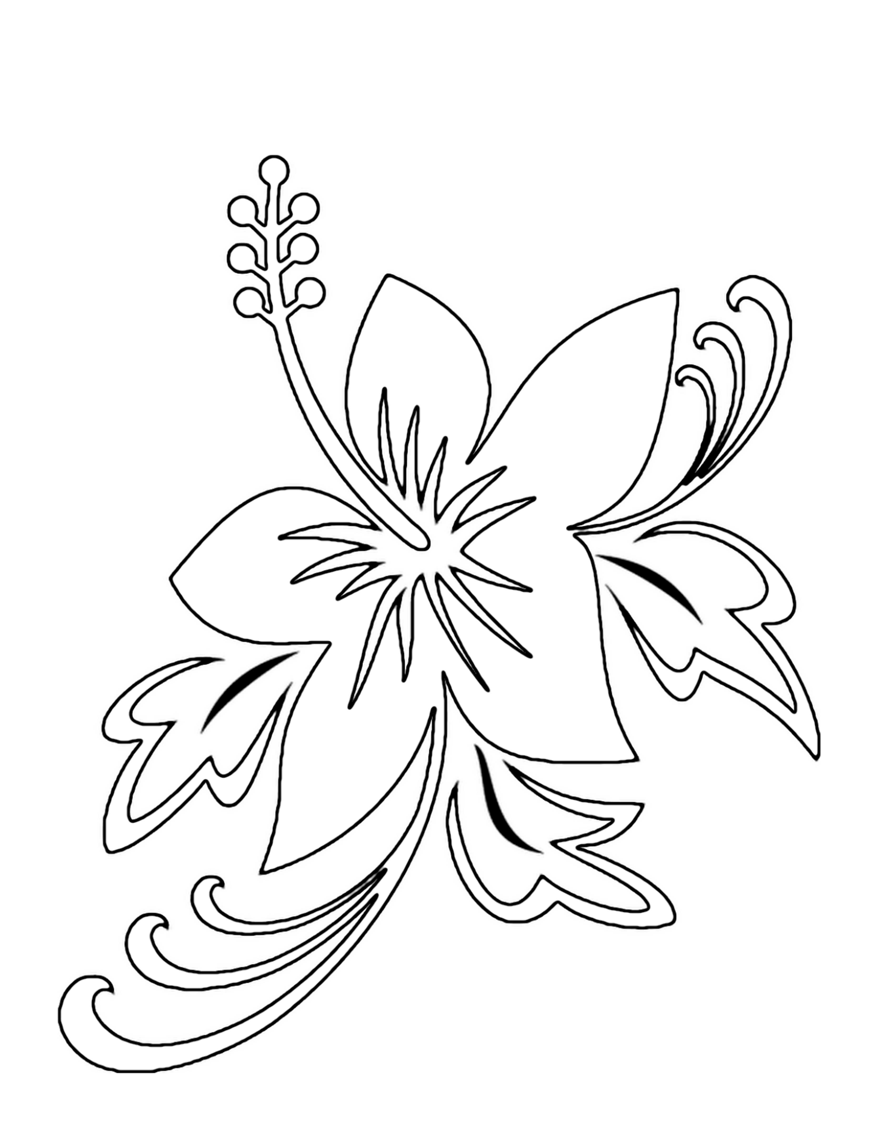 printable flowers to color coloring pages printables flowers shoaib bilal flowers flowers color printable to