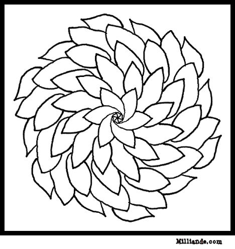 printable flowers to color free printable flower coloring pages for kids cool2bkids flowers to printable color