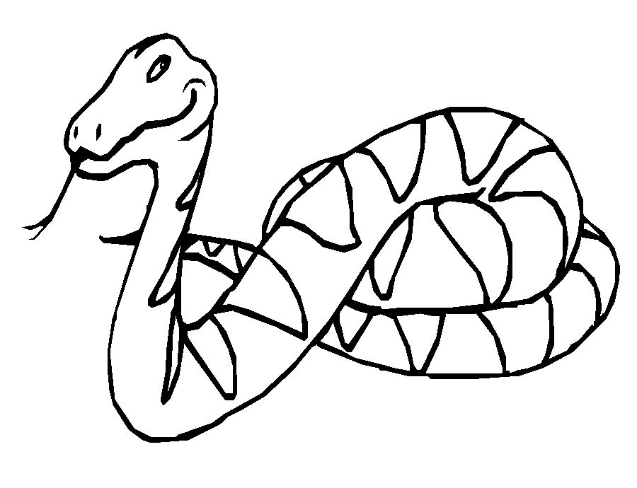 printable snake sketch of a cartoon snake coloring pages printable snake