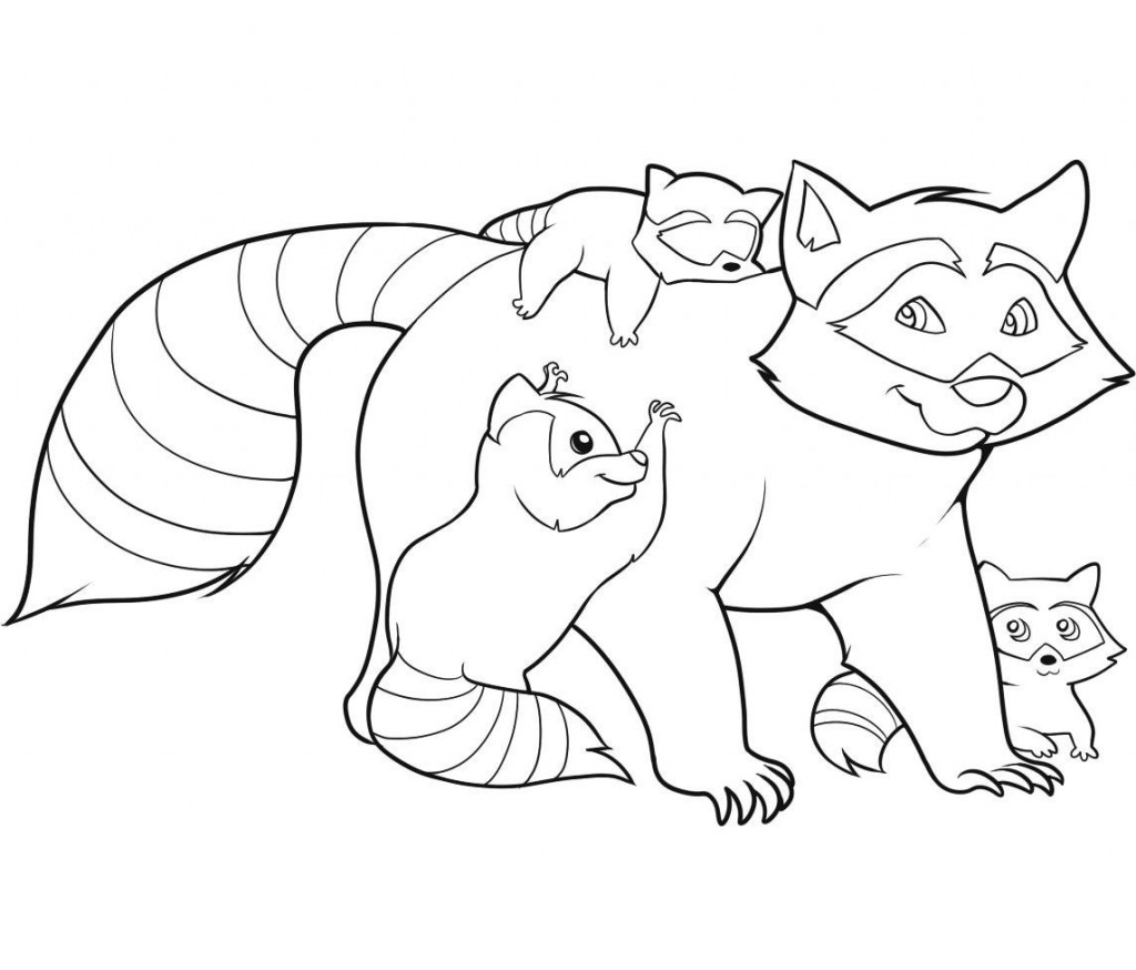 raccoon pictures to print free printable raccoon coloring pages for kids pictures print raccoon to