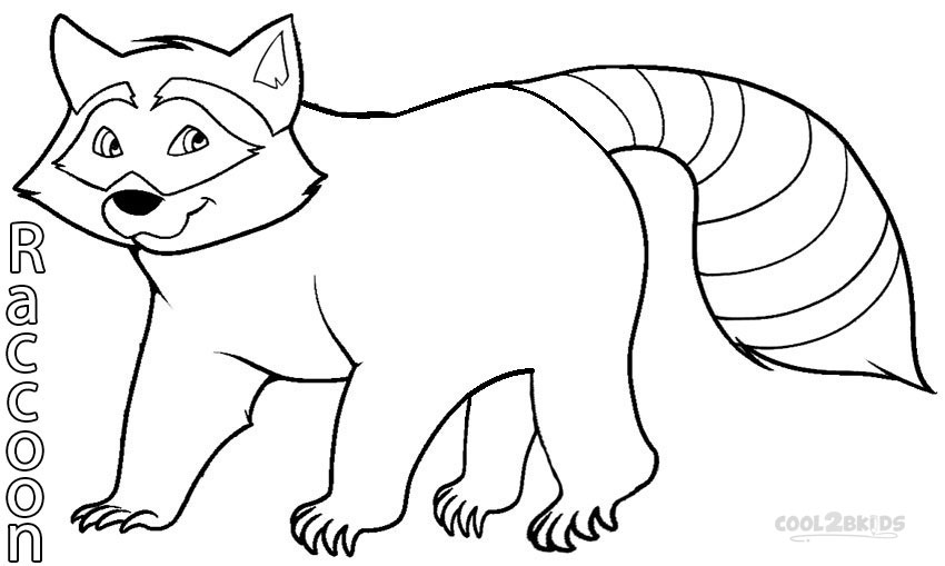 raccoon pictures to print printable raccoon coloring pages for kids cool2bkids raccoon print to pictures