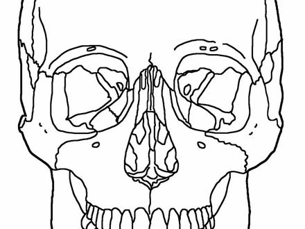 red skull coloring pages red skull coloring coloring pages red coloring skull pages
