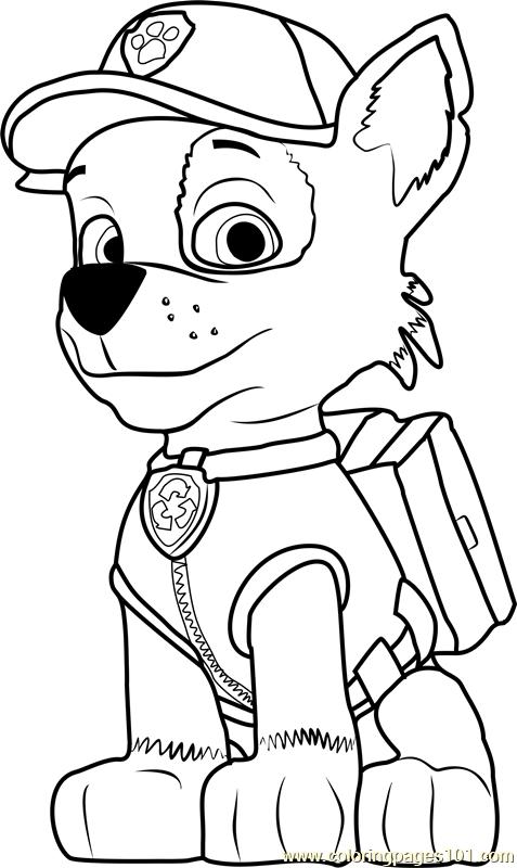 rocky paw patrol skye rocky zuma paw patrol pups patrol paw rocky