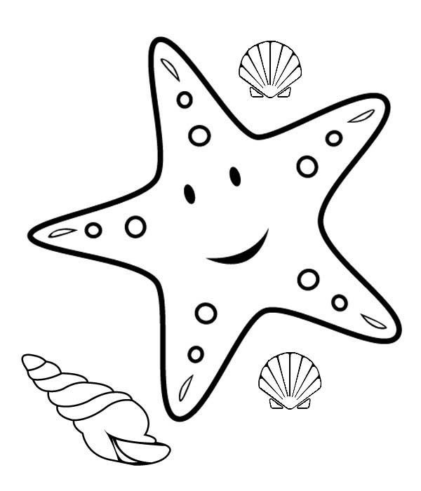 starfish coloring sheet 113 best images about ocean on pinterest starfish coloring sheet starfish