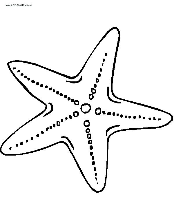 starfish coloring sheet starfish coloring pages free printables momjunction starfish sheet coloring