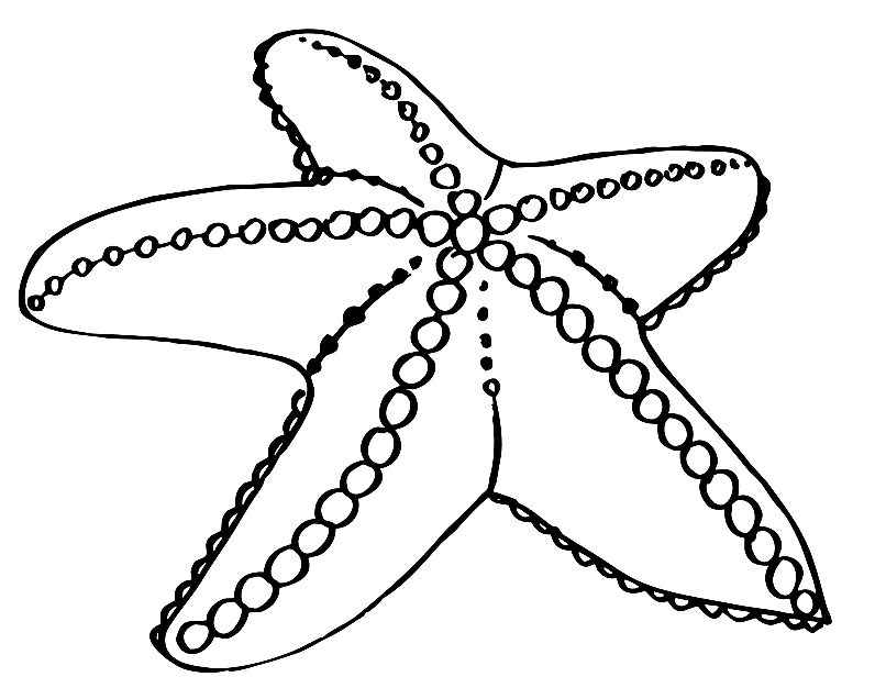 starfish coloring sheet starfish coloring pages to download and print for free coloring starfish sheet